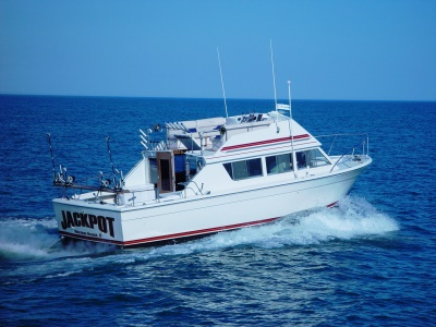 Jackpot Illinois and Wisonsin Lake Michigan Charter Fishing Boat for salo and trout